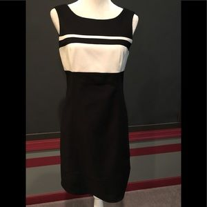WHBM Perfect Form Dress